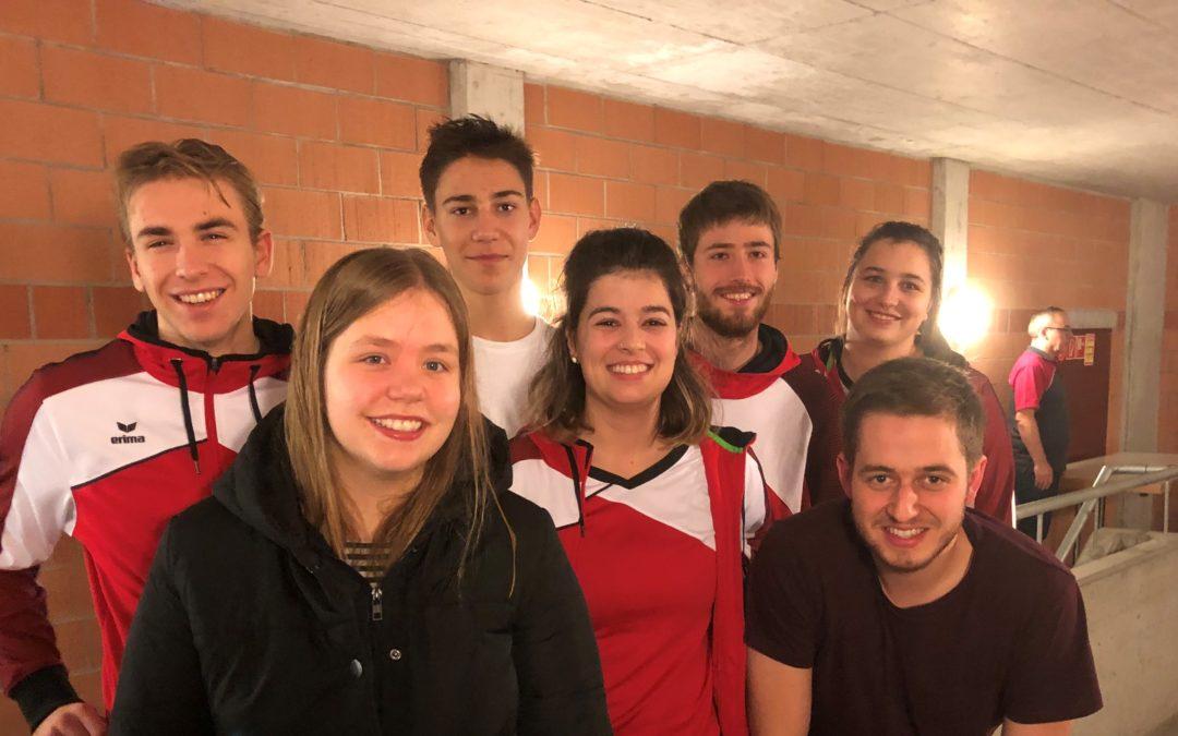 Volleyballturnier Birmenstorf